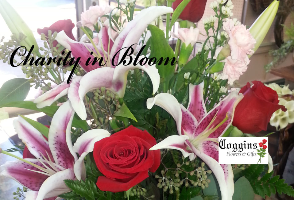 Coggins Flowers Charity in Bloom